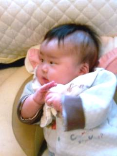 Taro20080319