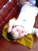 Taro20080522