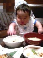 Taro200806151