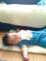 Taro200806191