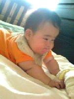 Taro200806201