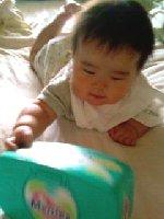 Taro200807111