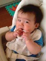 Taro200807281