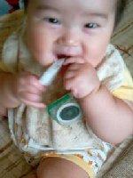 Taro200808144