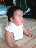 Taro200808181
