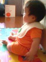 Taro200809051