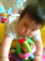 Taro200809111