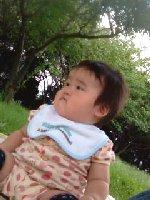 Taro200809161