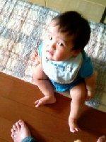 Taro200809191