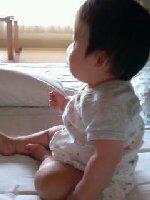 Taro200809222