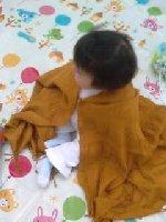 Taro200809293