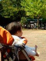 Taro200810031