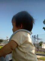 Taro200810171