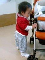 Taro200810181