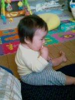 Taro200810211