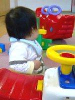 Taro200811011