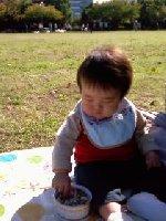 Taro200811022