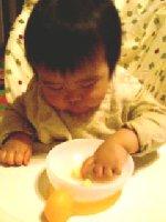 Taro200811121