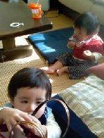Taro200811150_2