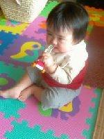 Taro200811161