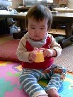 Taro200811211