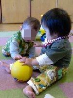 Taro200811222