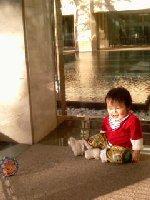 Taro200811241