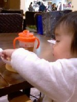 Taro200812052_2