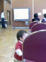 Taro200812061