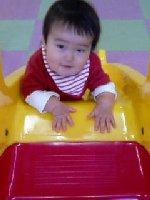 Taro200812131