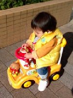 Taro200812241