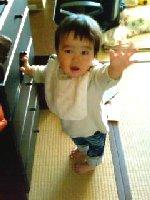 Taro200901041