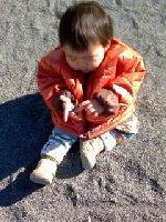 Taro200901161
