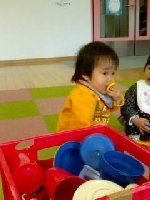 Taro200903041