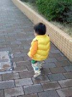 Taro200903231