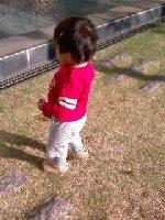 Taro200904181