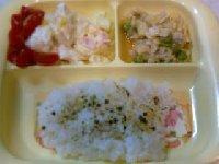Taro200906081
