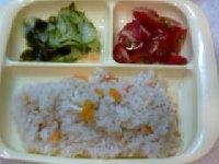Taro200906294