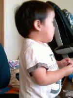 Taro200908181